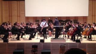 Concerto para fagote em lá menor - Allegro - A. Vivaldi