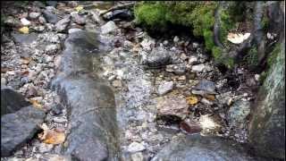 Mountain Stream Trickles Down Kearsarge