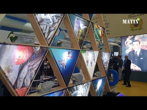 Video : Salon Halieutis : l'édition 2019 tient toutes ses promesses