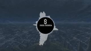 #1 SEBI BENEA-CALATOR