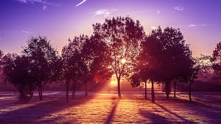 Manu Zain - Beautiful Day [Silk Music]