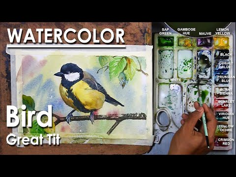 Watercolor Painting : A composition on a bird | Great tit