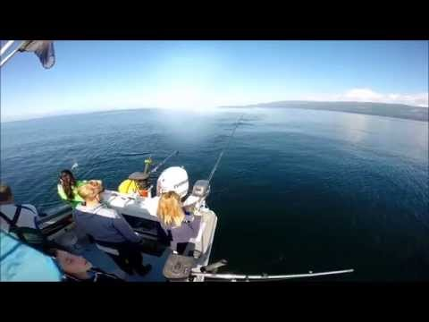 Halibut and Salmon fishing,Sooke B.C. ,Fresh One Fishing Charters