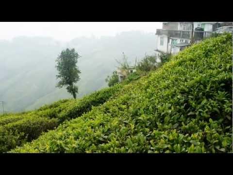 Darjeeling in Himalaya India