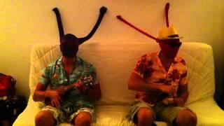 magique ukulele plantation