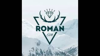 Hardwell & Headhunterz feat. Haris - Nothing Can Hold Us Down [Roman EDM Remix]