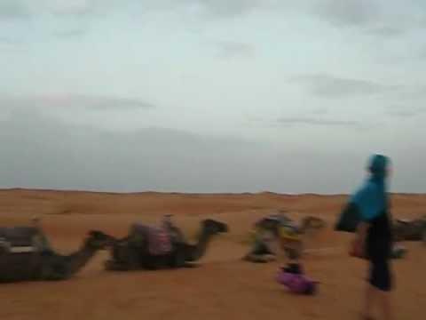 Bobos in the Sahara, Erg Chebbi, Morocco