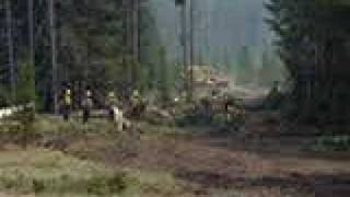 Dozer Operations - Panther Creek Fire - 2000 - Bear Divide IHC