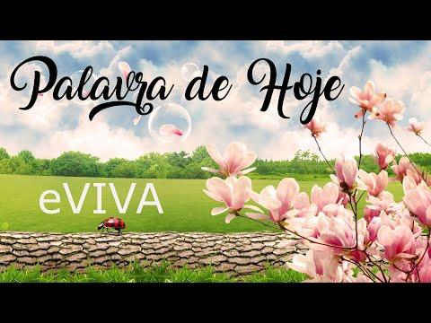 PALAVRA DE HOJE 26 DE MARÇO eVIVA MENSAGEM MOTIVACIONAL PARA REFLEXÃO DE VIDA - BOM DIA!