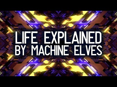 Download Video What Life Is About. Life Meaning Explained By The Entities