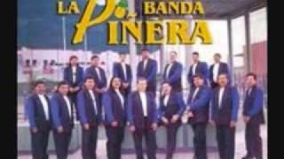 la iguana banda la piñera.wmv
