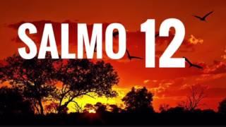 Salmo 12 / Devocional de Salmos