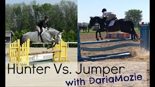 Hunter Vs Jumper   Riding Style & Rules