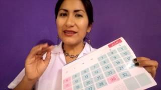 📅 Metodo del Ritmo Calendario - ciclo regular.