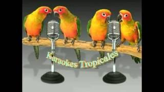Karaokes Tropicales-Lola La Coquetera