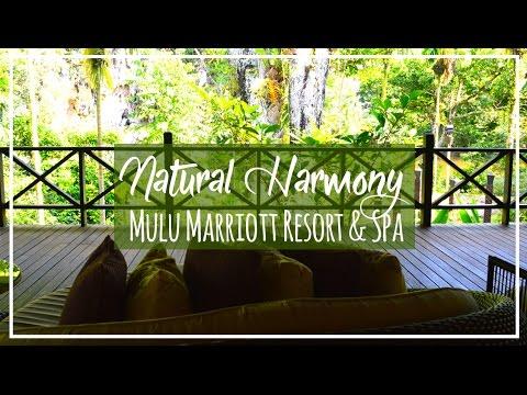 Mulu Marriott Resort & Spa Tour | Sarawak Borneo at Mulu Park