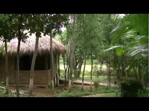 Beautiful Bangladesh Lichibari Eco Cottage Srimangal Bangladesh