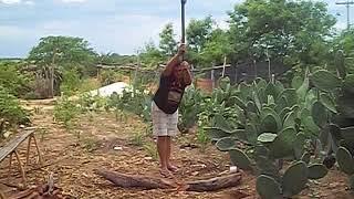Mulher cortando lenha