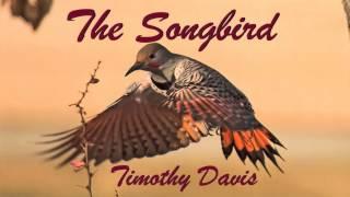 The Songbird - Timothy Davis