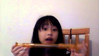 crazyslinger playing sorcer and the white snake song on recorder and guitar