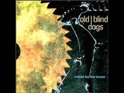 old-blind-dogs-jean-o-bethelnieglenlogie-barbaricgoose
