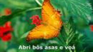 Voá Borboleta - Sara Tavares (com letra)