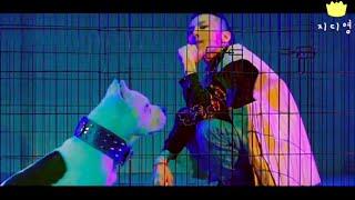 G-DRAGON(지드래곤) - BULLSHIT(개소리) Music Video & Concert Mash up FMV ENG SUB KING OF KPOP LEGEND 권지용