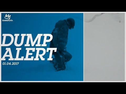 Dump Alert || 01.04.2017