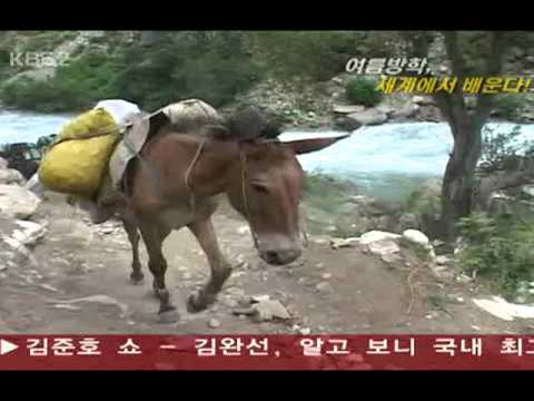 VJ 특공대 – 한국 청소년 오지탐사대 네팔 돌포팀