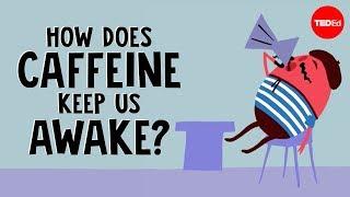 How does caffeine keep us awake? - Hanan Qasim width=