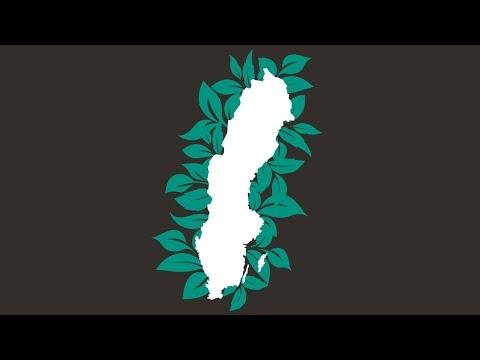 Intresset för grön finansiering ökar i svensk kommunsektor