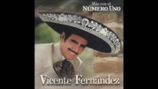 - NOS ESTORBO LA ROPA - VICENTE FERNANDEZ (FULL AUDIO)