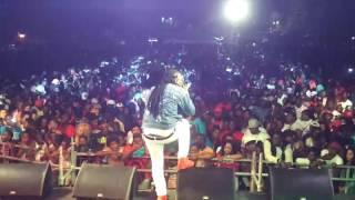 -Octane live in Antigua 2017 (part 4)