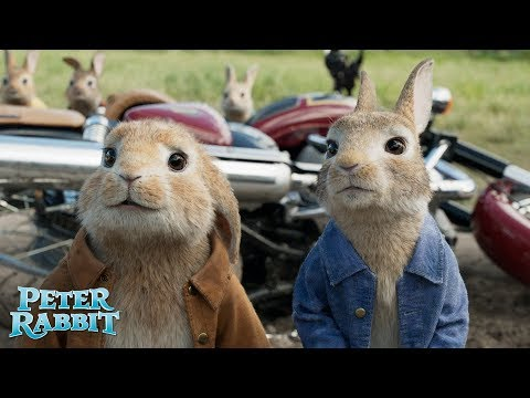PETER RABBIT. Peter siempre está perfecto. En cines 23 de marzo.