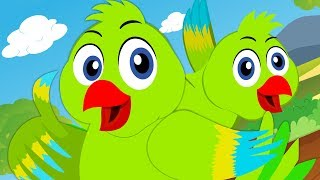 Main Tota Main Tota   मैं तोता मैं तोता   हिंदी कविता   Rhymes in Hindi   Hindi Balgeet   Kids TV width=