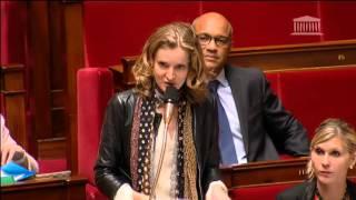 NKM intervient à l'Assemblée dans la discussion de la loi sur la liberté de création