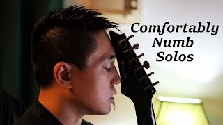 """Alexis Yousician - Pink Floyd """"Comfortably Numb"""" Solos"""
