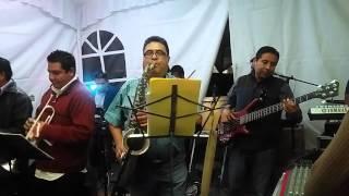 Palomazo Musical Santo Domingo ¨Cumbia de la Enfermera¨