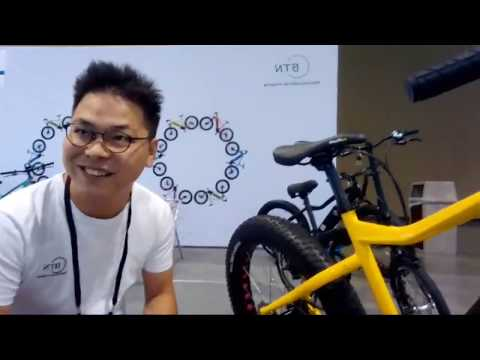 BTN Bicycles OEM, Open Mold, Generic eBikes | Cheap eBikes