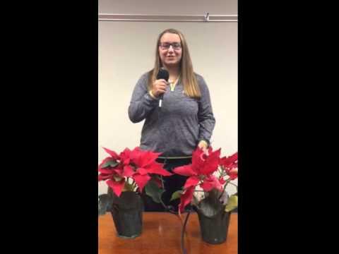 Merry Christmas from Joliet Catholic Academy