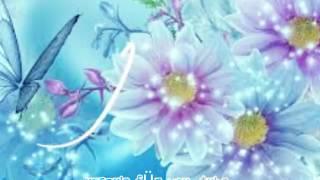Marchenballade -instrumentalna muzyka