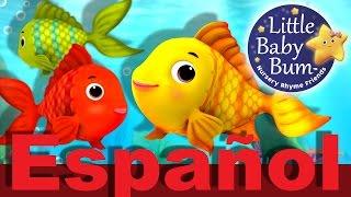 Contar peces | Canciones infantiles de números | LittleBabyBum