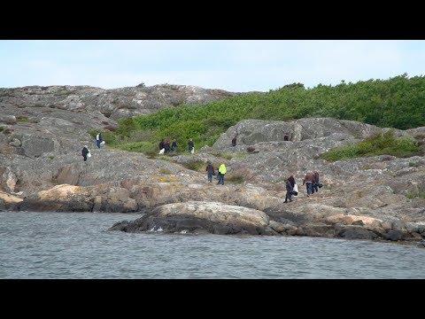 Volvo Car Sverige – Beach Clean Up