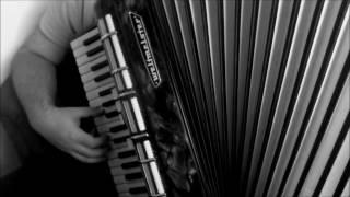 Kayah & Bregović - To nie ptak/accordion/akordeon/cover/