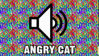 ANGRY CAT SOUND EFFECT