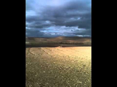 Short Stone & Landscape