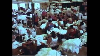 Greetings from Wollongong - clothing factory excerpt 1979