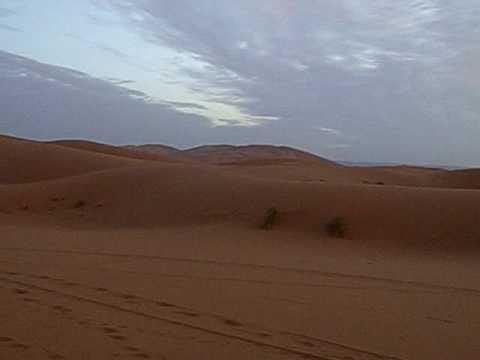 sahara 2010.AVI