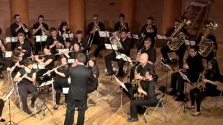 Momento Musical (meditación) F.Schubert