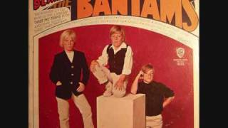 The Bantams - World Without Love